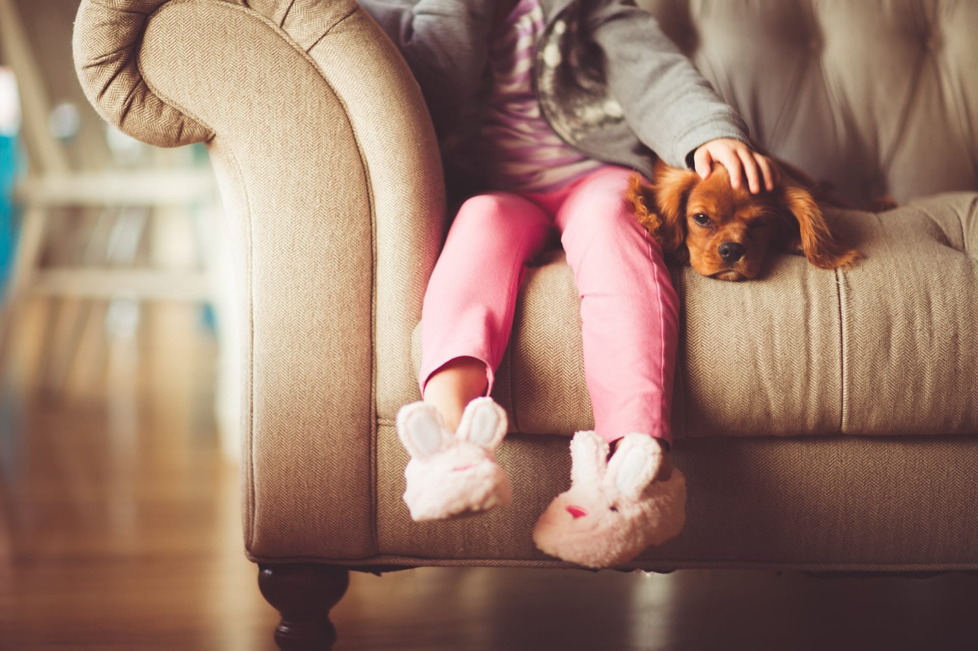 dog lying on the couch with young girl