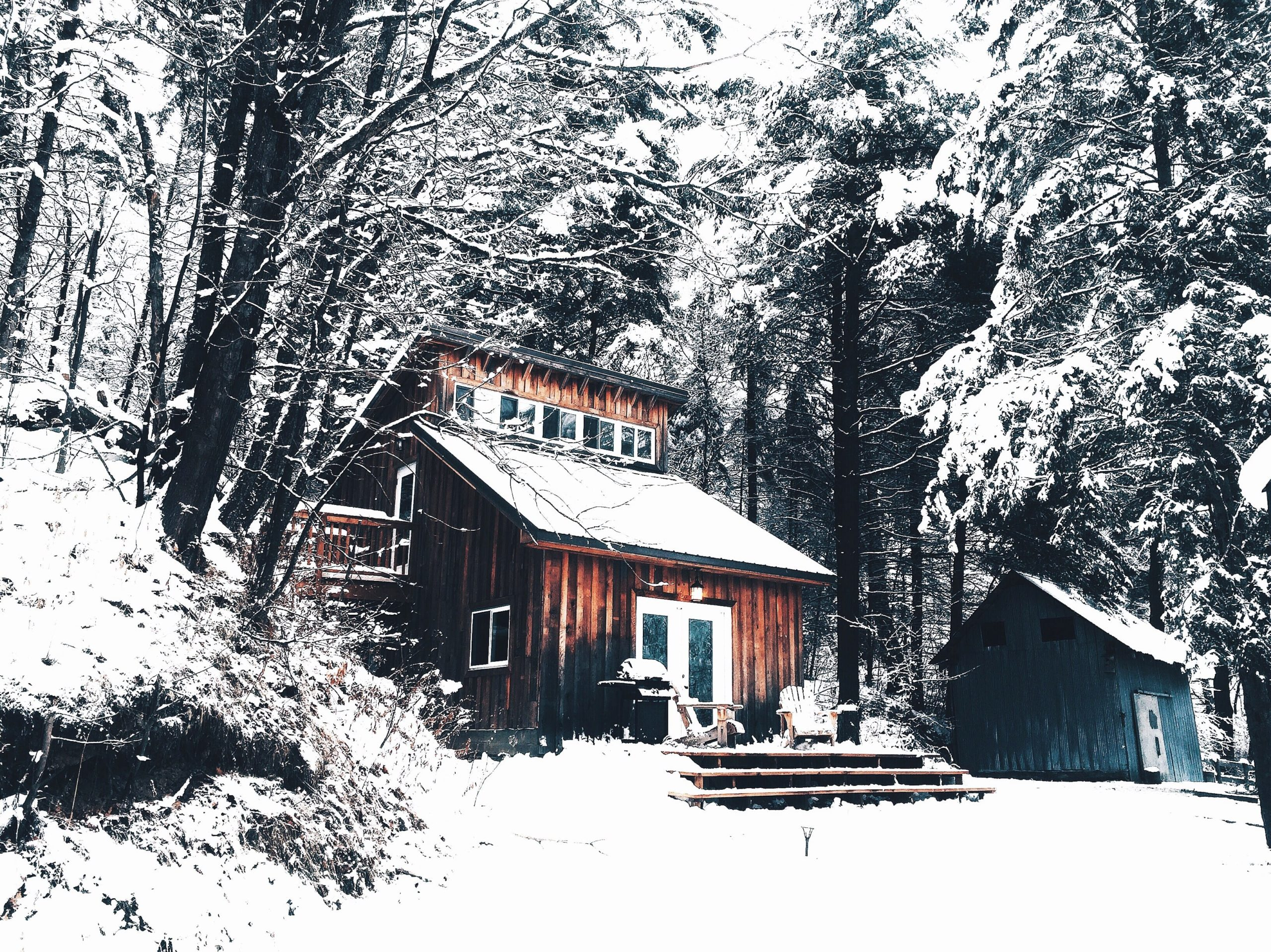 Winter scene of a snow covered house or cottage surrounded by trees
